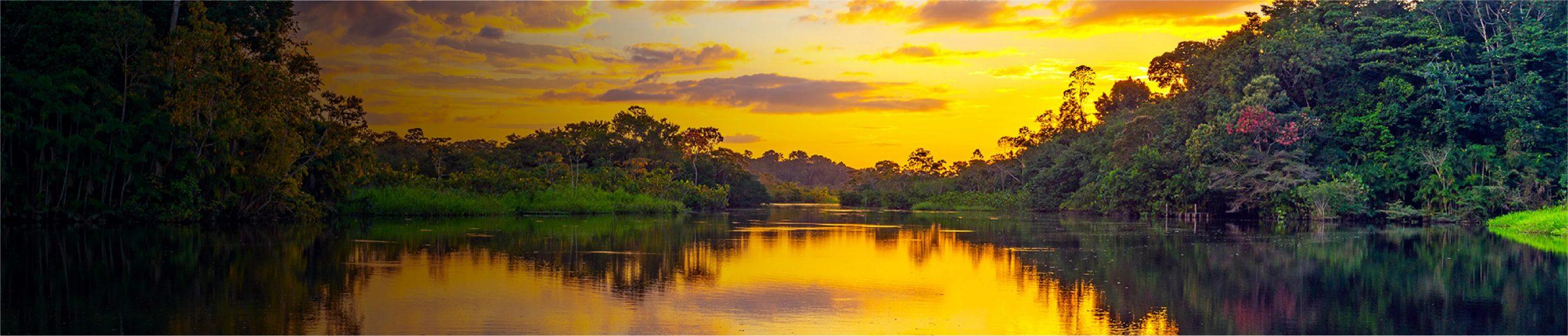Yasuní, el paraíso de la Amazonía profunda